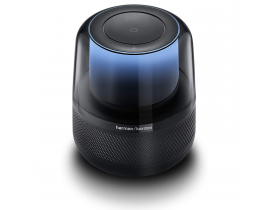 HARMAN KARDON CASSA ALTOPARLANTE BLUETOOTH PORTATILE SUB SMART SPEAKER
